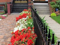 3ft Tall Traditional Grade Iron Fence Used as a Decorative Row-House Property Divider (Style #1: Classic)