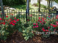 4ft tall iron fence panel in Hoop and Picket style